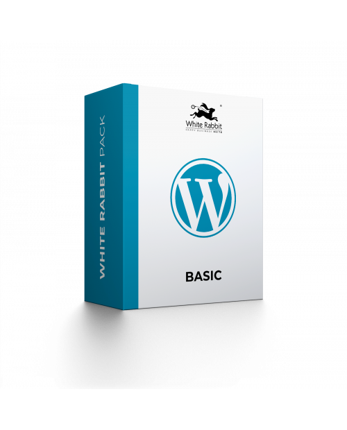 Basic Wordpress Site
