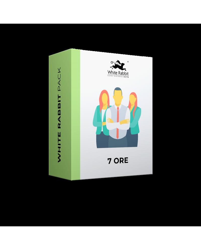7 Ore Consulenza Digital - Abbonamento Mensile