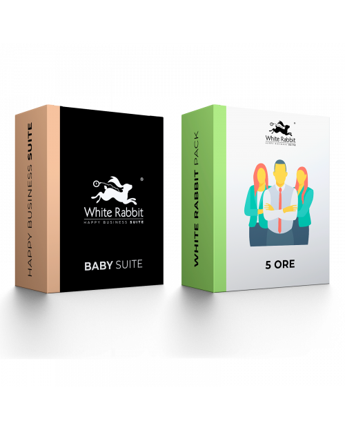 Pack: Baby Suite + 5 Hours of Web Expert Assistance - Monthly Subscription