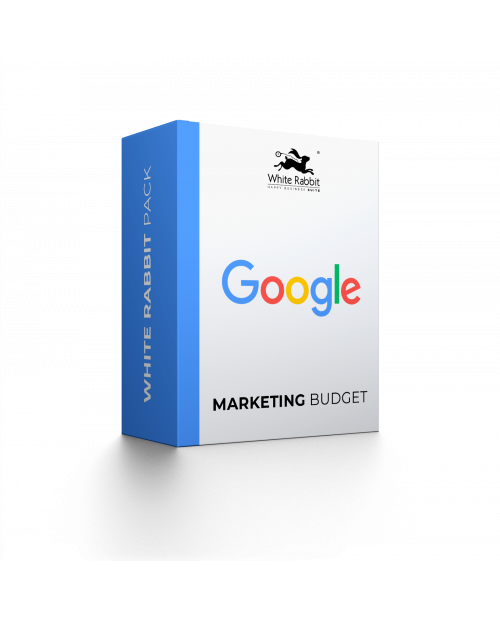 Google Marketing Budget