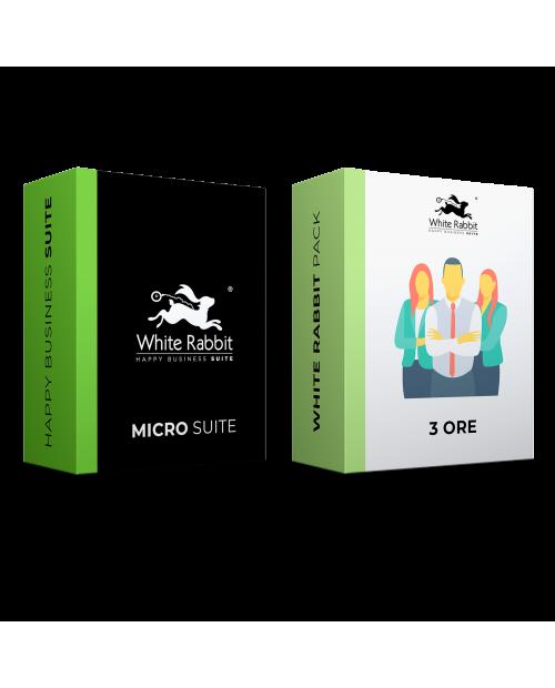 Pack: Micro Suite + 3 Horas de Soporte Web Experto - Suscripción Mensual