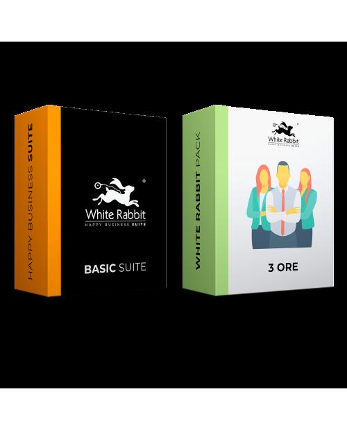Pack: Basic Suite + 3 Horas de Asistencia Web Experta - Suscripción Mensual
